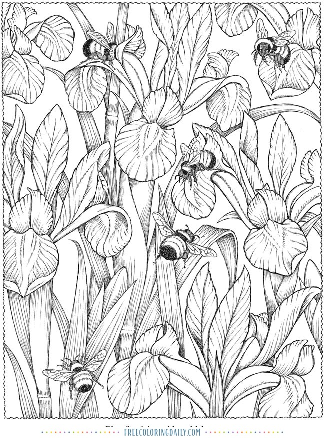 Free Bees & Flowers Coloring