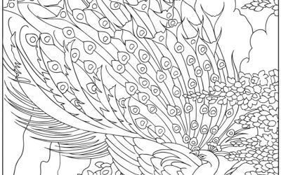 Free Peacock Coloring Page