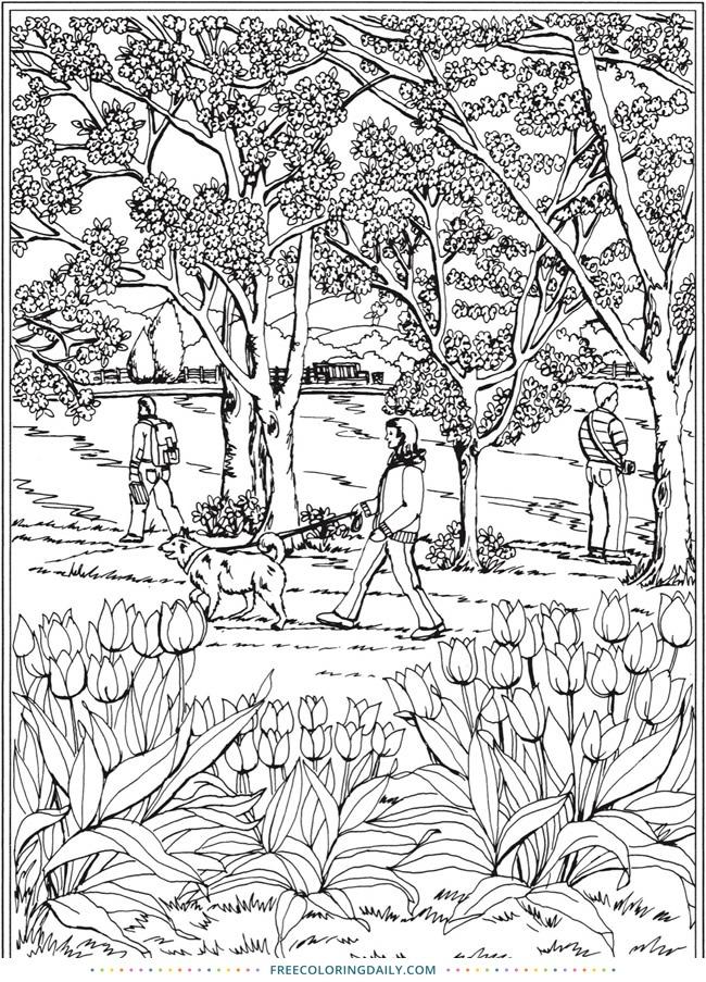 Free Garden Coloring
