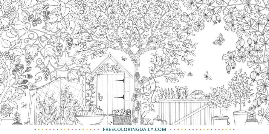 Free Backyard Garden Coloring
