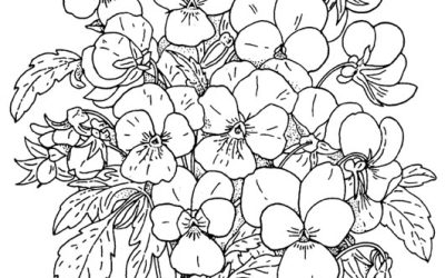 Free Floral Coloring Page