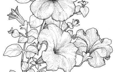 Free Gorgeous Floral Coloring