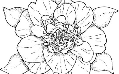Free Beautiful Flower Coloring