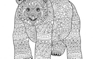 Free Pattern Bear Coloring