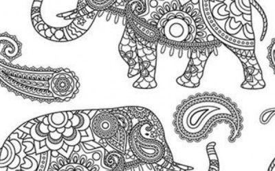 Free Boho Elephant Coloring