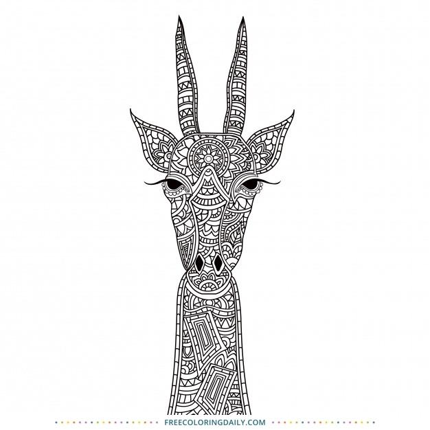 Free Pattern Animal Coloring