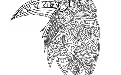 Pretty Patterned Parrot Page