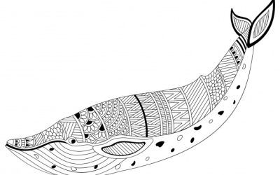 Free Pattern Whale Coloring