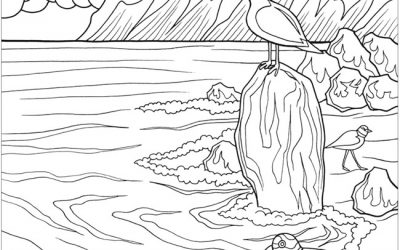 Free Seashore Coloring Sheet