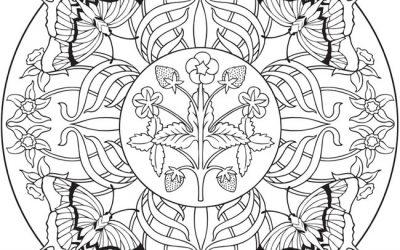 Free Butterfly Mandala Coloring