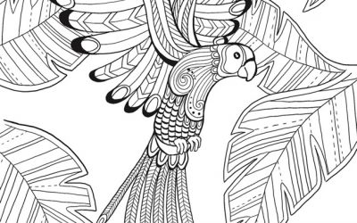 Free Coloring Tropical Bird