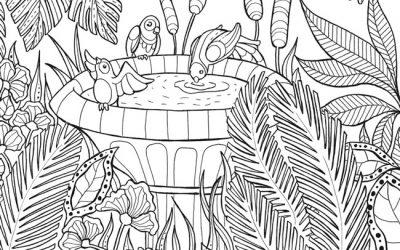 Tropical Birdbath Free Coloring Page