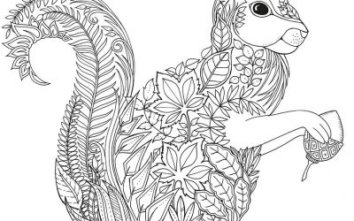 Free Patterned Squirrel Coloring