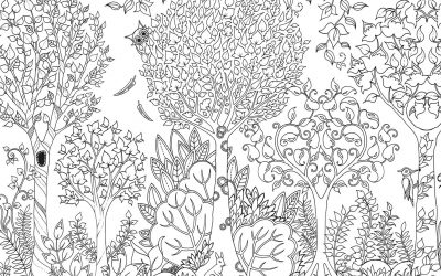 Free Coloring Beautiful Forest