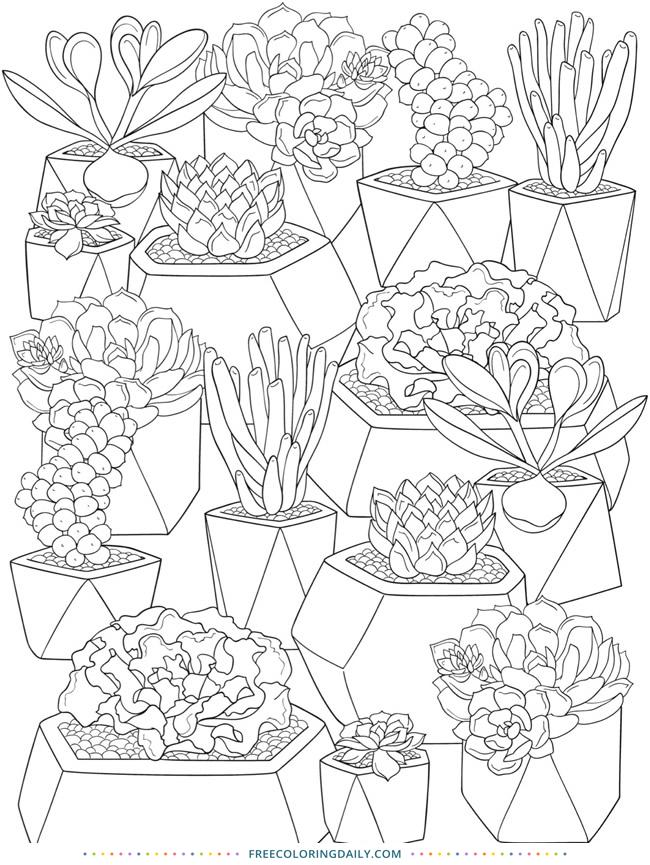Free Cactus Coloring