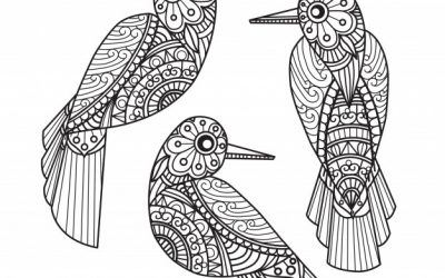 Free Patterned Birds Coloring