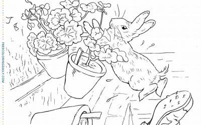Free Peter Rabbit Coloring