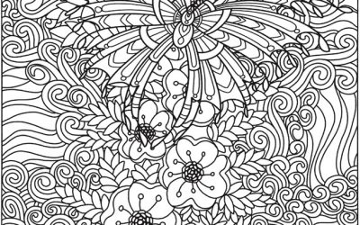 Free Floral Butterfly Coloring