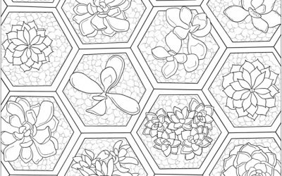 Free Succulents Coloring