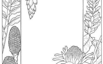 Free Coloring Nature Stationery
