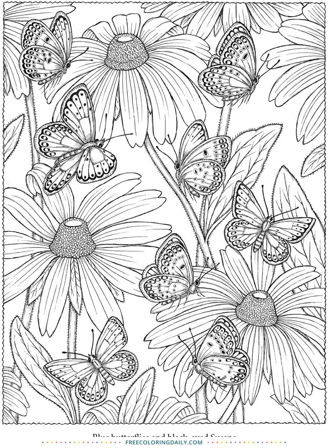 Free Butterflies & Flowers Coloring