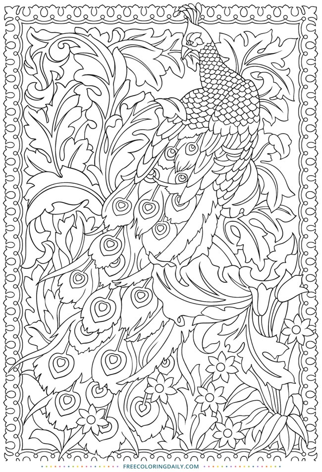 free stunning peacock coloring - Peacock Coloring Book