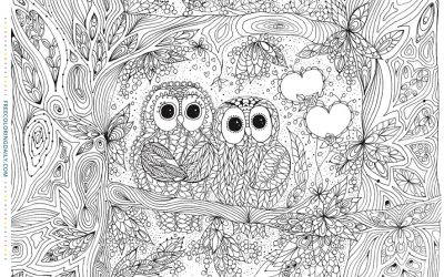 Free Cute Owls Coloring