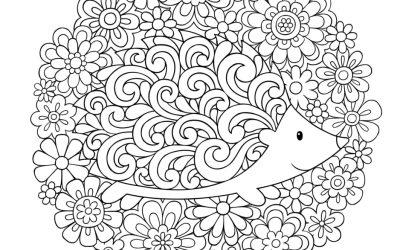 Free Hedgehog Coloring Sheet