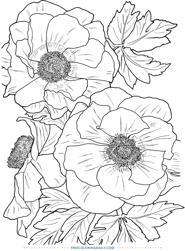 Free Coloring – Lovely Florals