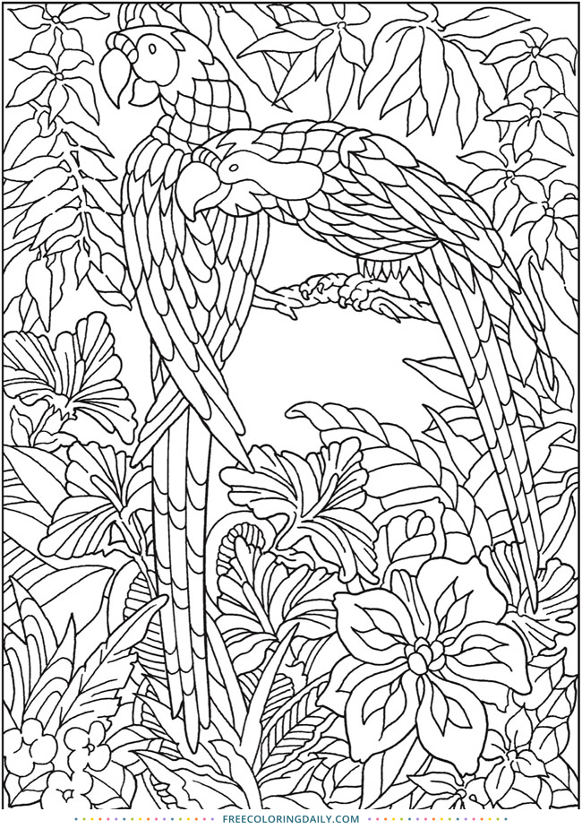 Free Jungle Coloring Page
