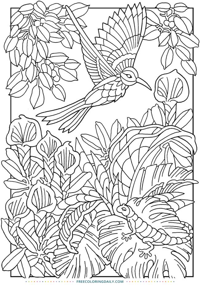 Free Bird Coloring Sheet