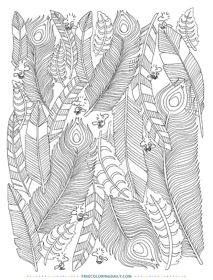 Free Boho Feathers Coloring