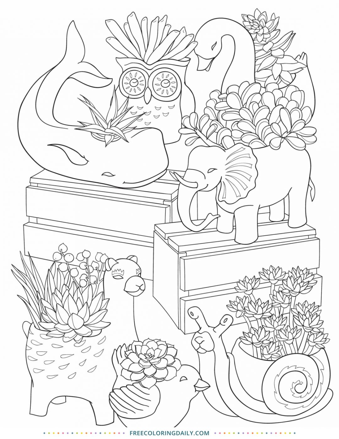 Free Succulent Coloring Page