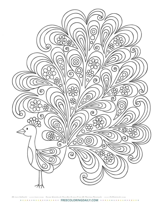 Free Fun Peacock Coloring Page