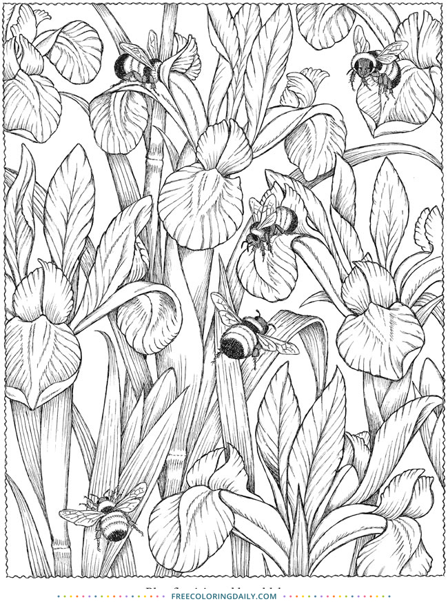 Free Flowers & Bees Coloring