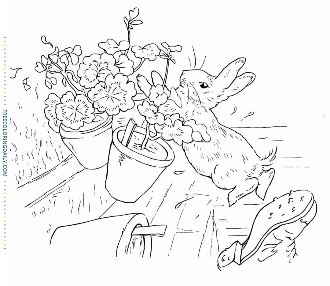 Free Peter Rabbit Coloring