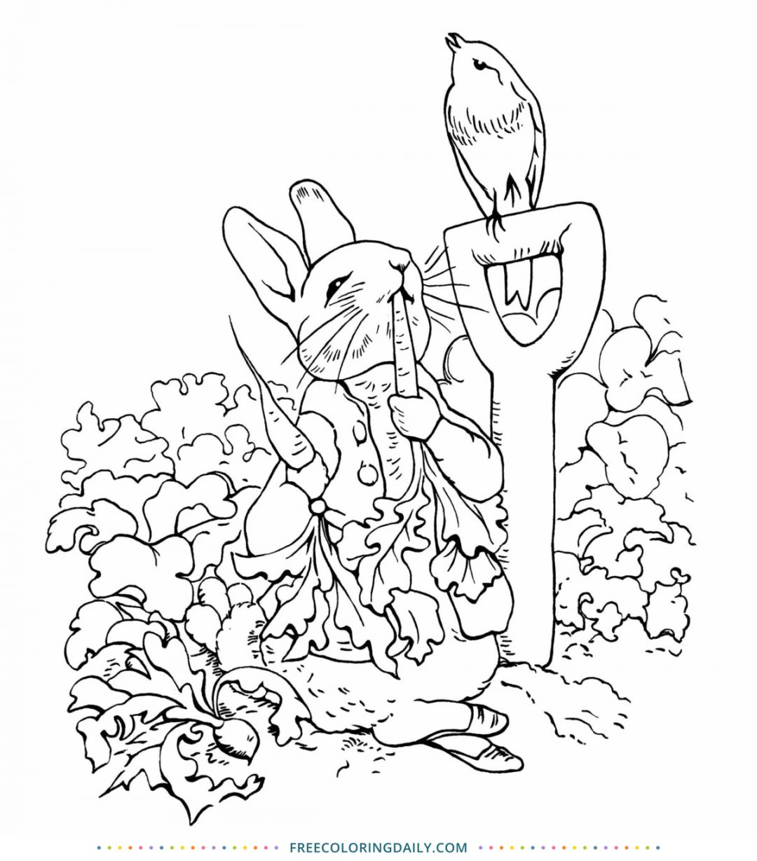 Free Peter Rabbit Coloring Page
