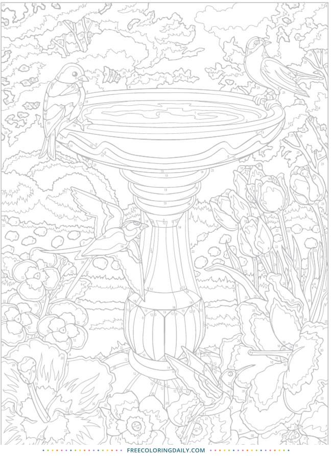 Free Birdbath Coloring Page