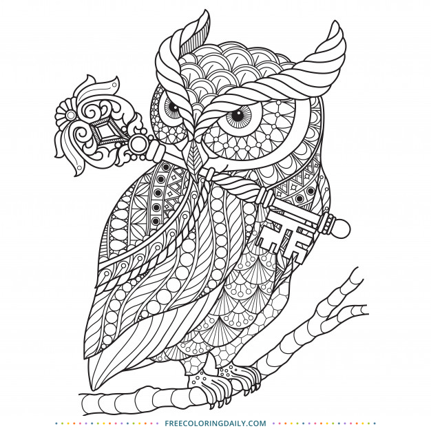Free Owl Zentangle Coloring Page Free Coloring Daily