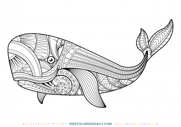 Free Whale Zentangle Coloring