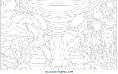 Free Pretty Birdbath Coloring