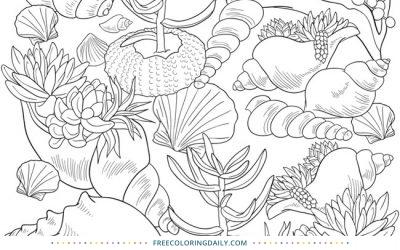 Free Pretty Seashells Coloring