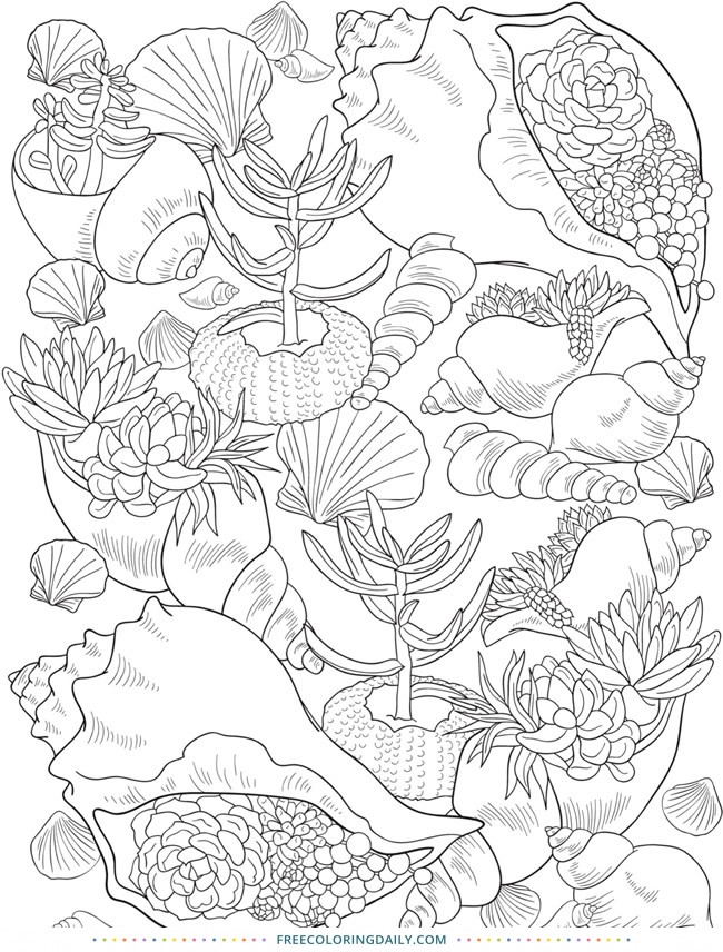 Free Pretty Seashells Coloring